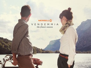 vendemmia_blog